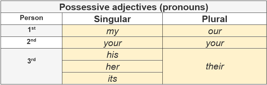 Possessive Adjectives (pronouns) by AtReks
